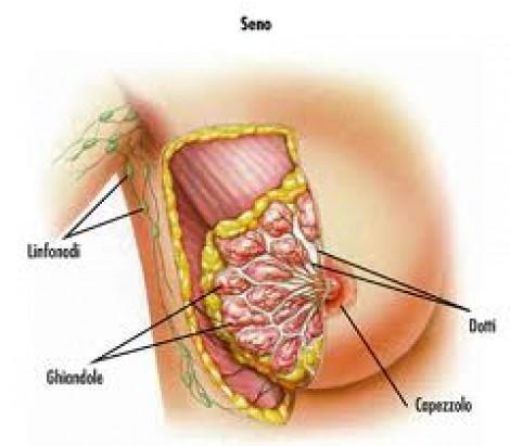 La ricetta di una curcuma per aumento di un petto
