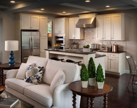 Casa immobiliare accessori salone e cucina insieme - Salone e cucina open space ...