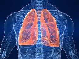 polmoni cancro