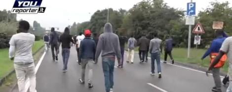 protetsa migranti