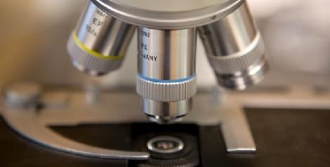 microscopio in 3 d cancro