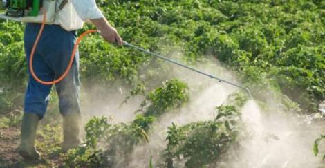 pesticidi taranto
