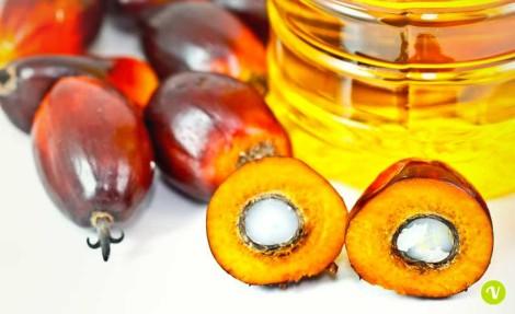 olio di palma salute