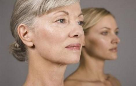 scoperte molecole che sono alla base dellinvecchiamento