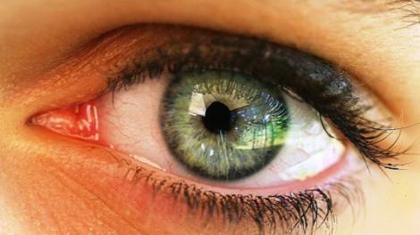 grandezza delle pupille e intelligenza