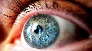 retina artificiale